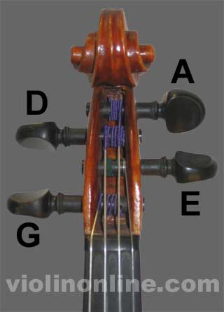 Learn viola notes